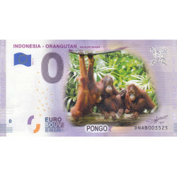 ID - Indonesia - Orangutan - 2019
